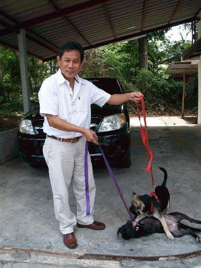 Phuket trains drug dogs | The Thaiger