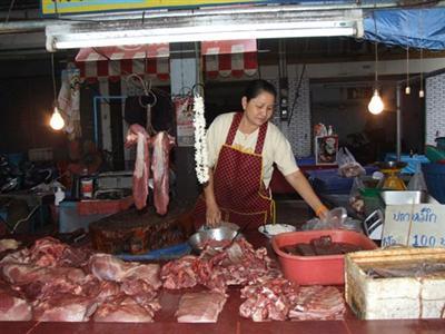 Phuket well prepared for swine flu outbreak   The Thaiger