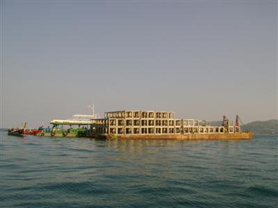 Reef relief: Phuket fishermen get massive haul | The Thaiger