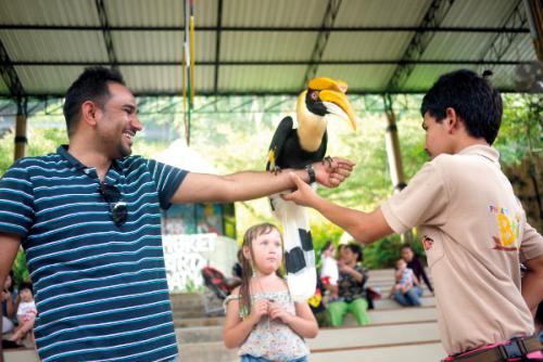 A walk in the (bird) park | The Thaiger