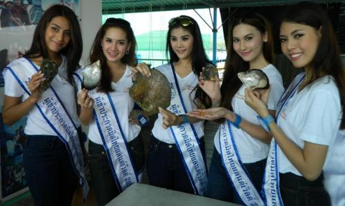 Miss Thailand beauties in Phuket, bound for Myanmar | The Thaiger