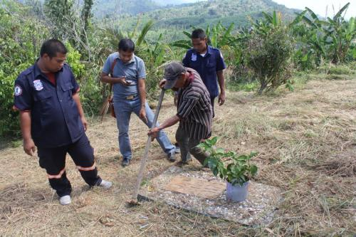 Marked Phuket grave gone to the dogs | The Thaiger