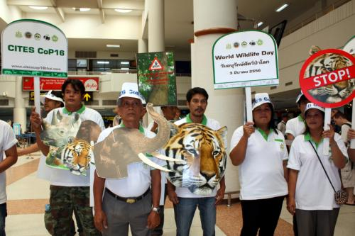 DNP outlines conservation issues to be presented to CITES | The Thaiger