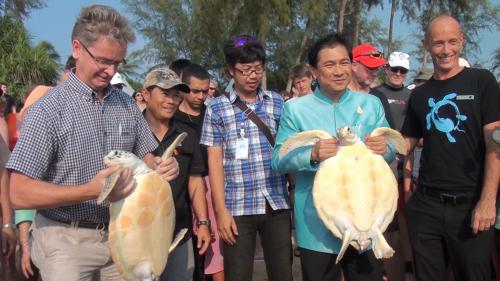 Phuket helps turtles break for the waves | The Thaiger