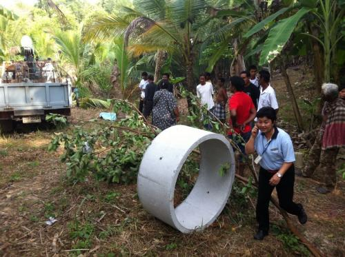 Phuket man crushed by truck and coconut tree | The Thaiger