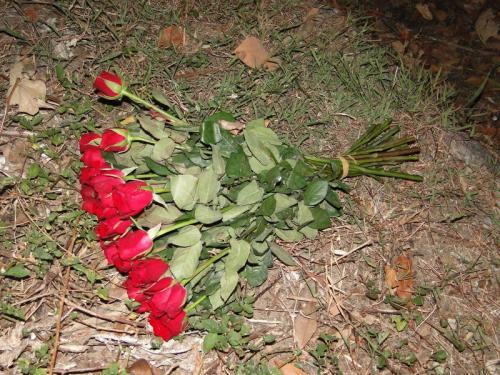 Phuket tourist carrying roses dies in motorbike crash   Thaiger