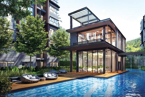 Phuket Property: Asking for a second opinion   The Thaiger