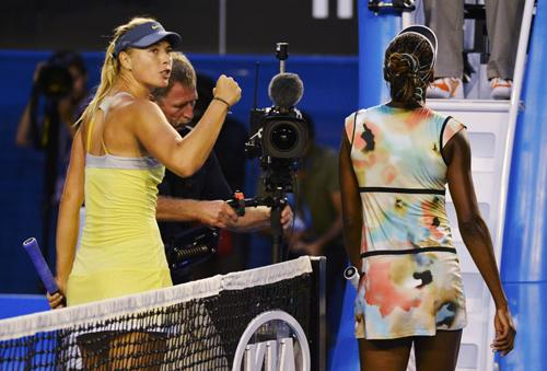 World Sports: Venus trapped as Sharapova flies | Thaiger