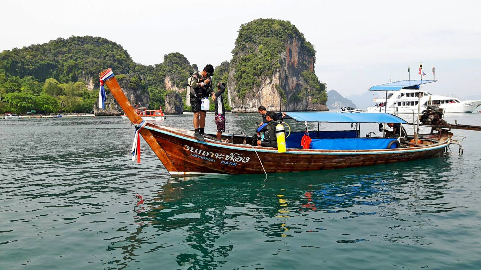 More fire jellyfish found off Krabi | The Thaiger