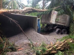 Truck driver killed in Surat Thani crash | News by Thaiger