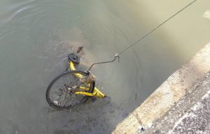 6 share-bikes found dumped in Bangyai canal | News by Thaiger