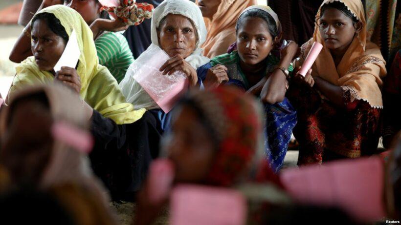 Elephants stampede Rohingya refugee camp   The Thaiger