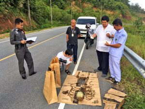 Human bones found on hills overlooking Chalong | News by Thaiger