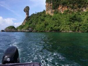 More than 10,000 fire jellyfish found near Gai Island, Krabi   News by Thaiger