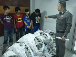 Thalang Police uncover 400+ kilos of drugs | News by The Thaiger