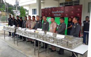 Marijuana valued at 2 million Baht - crackdown in Phang Nga | News by Thaiger