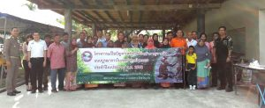 Paklok monkeys to be sterilised and moved away | News by Thaiger