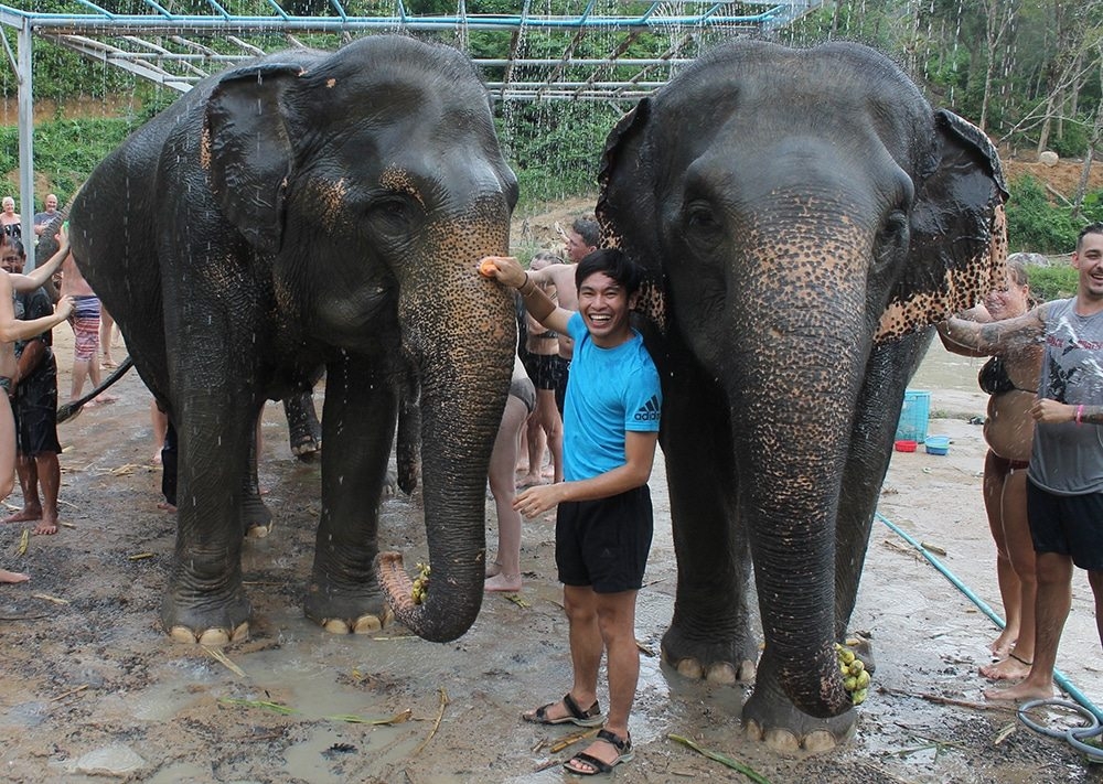 A day that I will treasure forever – visit to the Elephant Jungle Sanctuary Phuket | The Thaiger