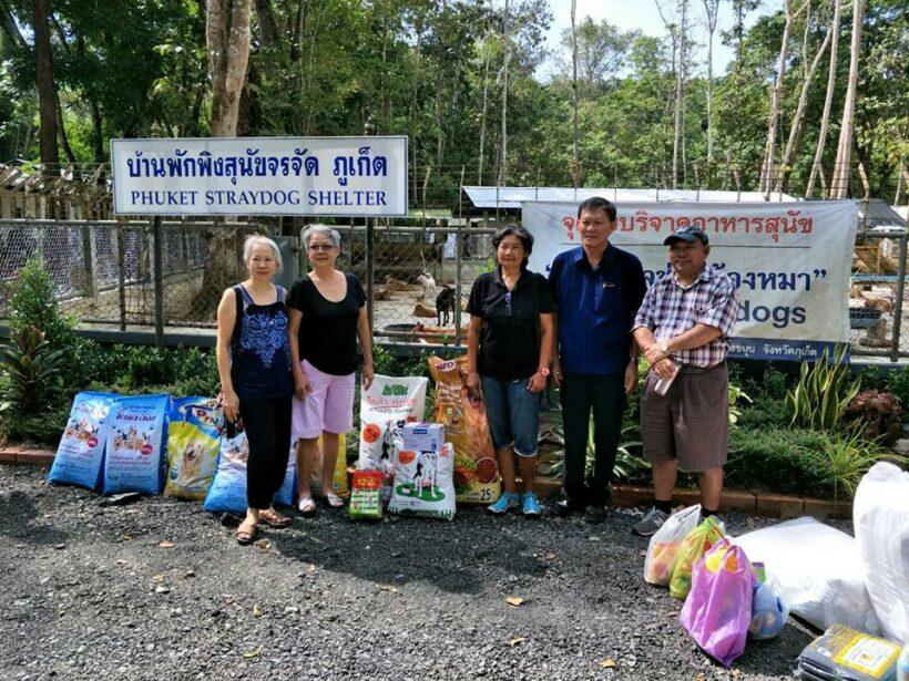 สลีพวิธมี ดีไซน์โฮเทล แอท ป่าตอง ร่วมบริจาคอาหาร สิ่งของและทำความสะอาด บ้านพักพิงสุนัขจรจัดจังหวัดภูเก็ต | News by The Thaiger
