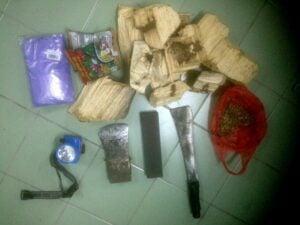 Eagle wood smugglers nabbed at Suan Pa Bang Kanun, Thalang | News by Thaiger