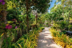 Thavorn Hotels - Phuket's luxury beach destinations   News by Thaiger