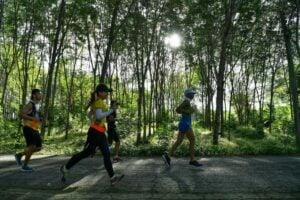Laguna Phuket Marathon to welcome 8,000+ runners for 2018   News by Thaiger