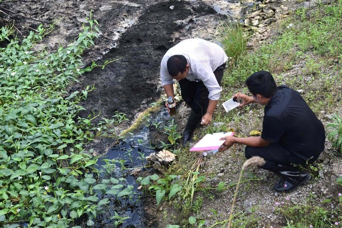 Krabi palm oil plant given warnings after releasing waste water   The Thaiger