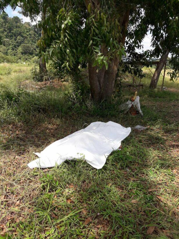 หนุ่มใหญ่ชาวลำปางเครียดปัญหาชีวิตอีกทั้งเมียหนีกลับบ้านเกิดทิ้งลูกไว้ให้ 2 คน คิดสั่นผูกคอตายใต้ต้นยูคาลิปตัสที่ จ.ภูเก็ต | The Thaiger