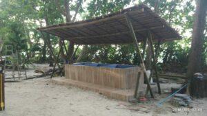 108 turtle eggs found on Lek Beach, Similan   News by Thaiger