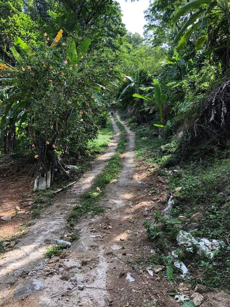 The Great Expedition - finding the Ancient Road To Kamala   News by Thaiger