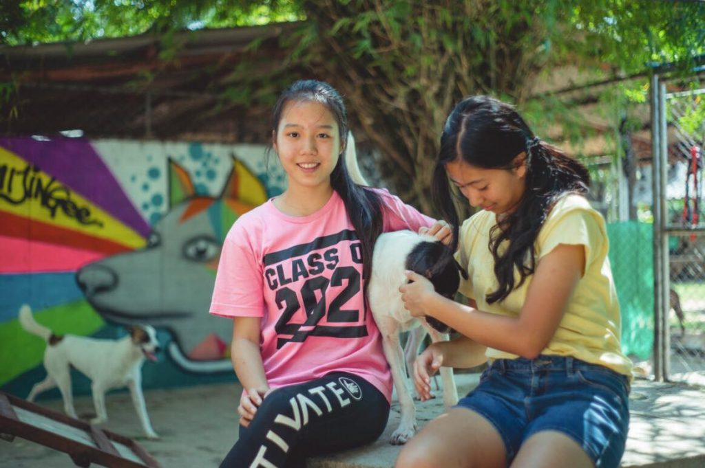 Soi Dog opening on Saturdays | News by Thaiger