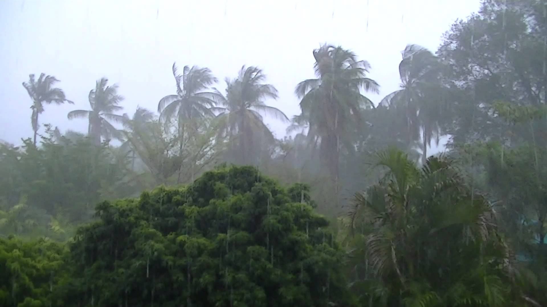 5 people dead following storms in 36 provinces   The Thaiger