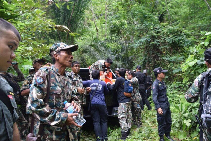 Officials raze illegal plantations in Krabi | The Thaiger