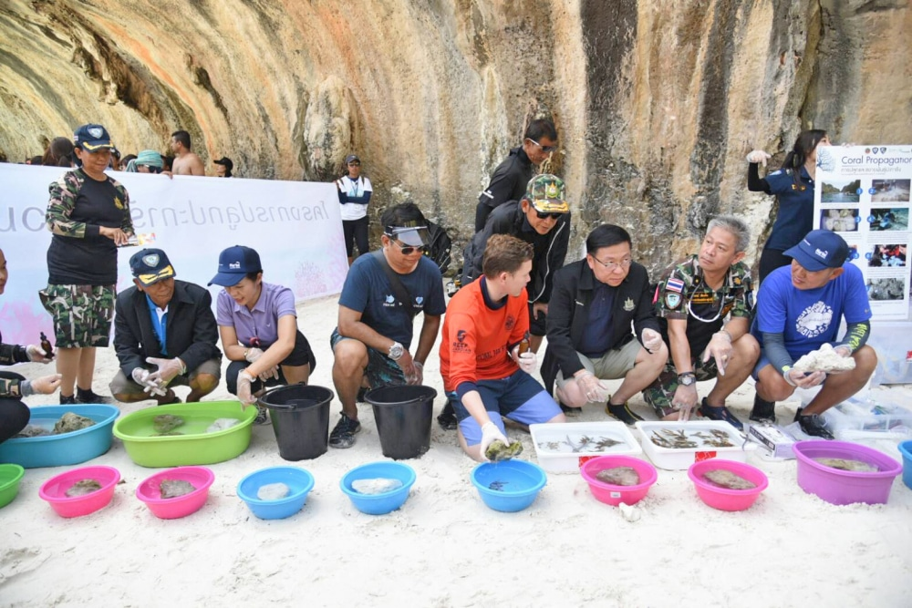 Maya Bay - let the healing begin | News by Thaiger