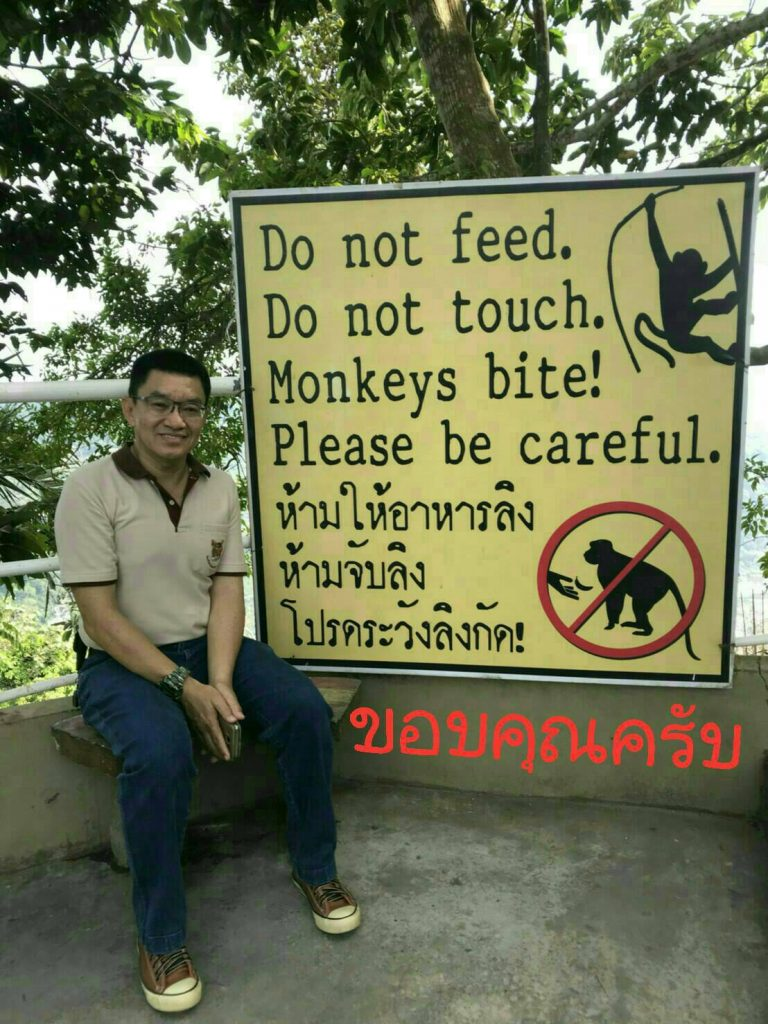 900,000 baht to move 'some' monkeys | News by The Thaiger