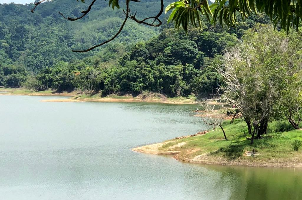 Worries arise over full dams, even before start of rainy season | News by The Thaiger