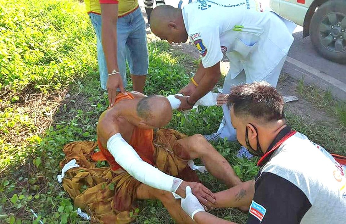 Seven pit bull dogs attack Monk | The Thaiger