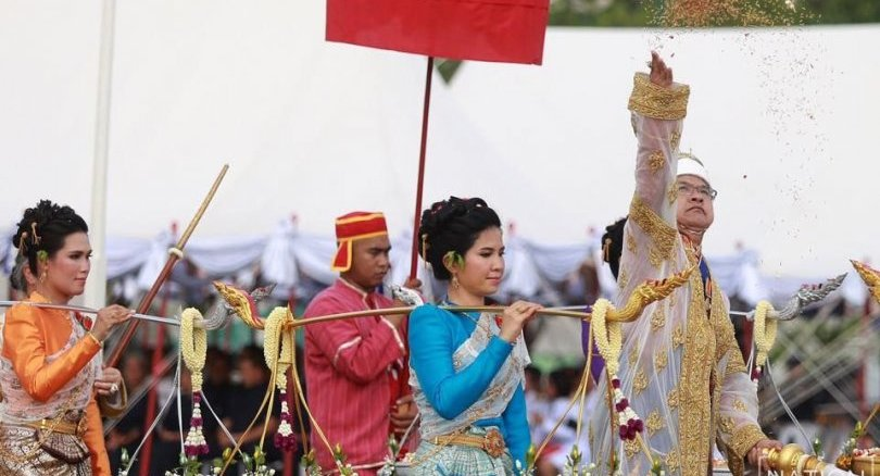 Royal Ploughing Day - Annual ceremony at Sanam Luang | News by Thaiger