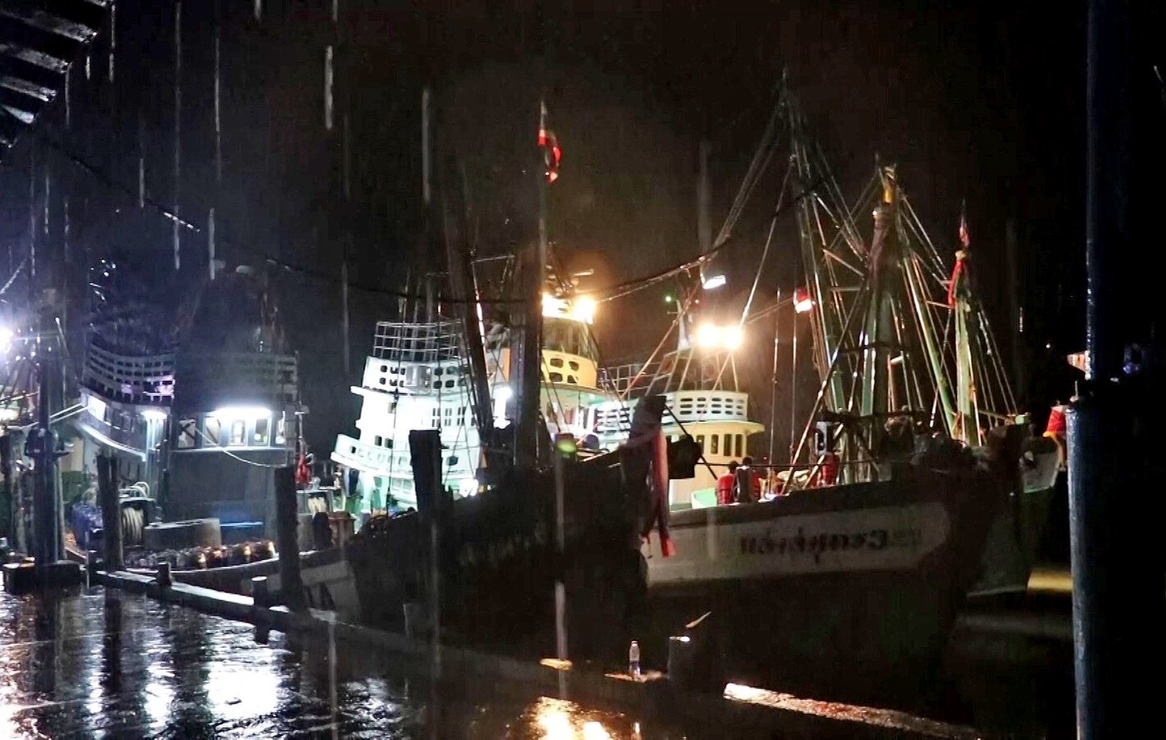 Investigation ordered over the Phuket whale shark caught by fishermen | The Thaiger