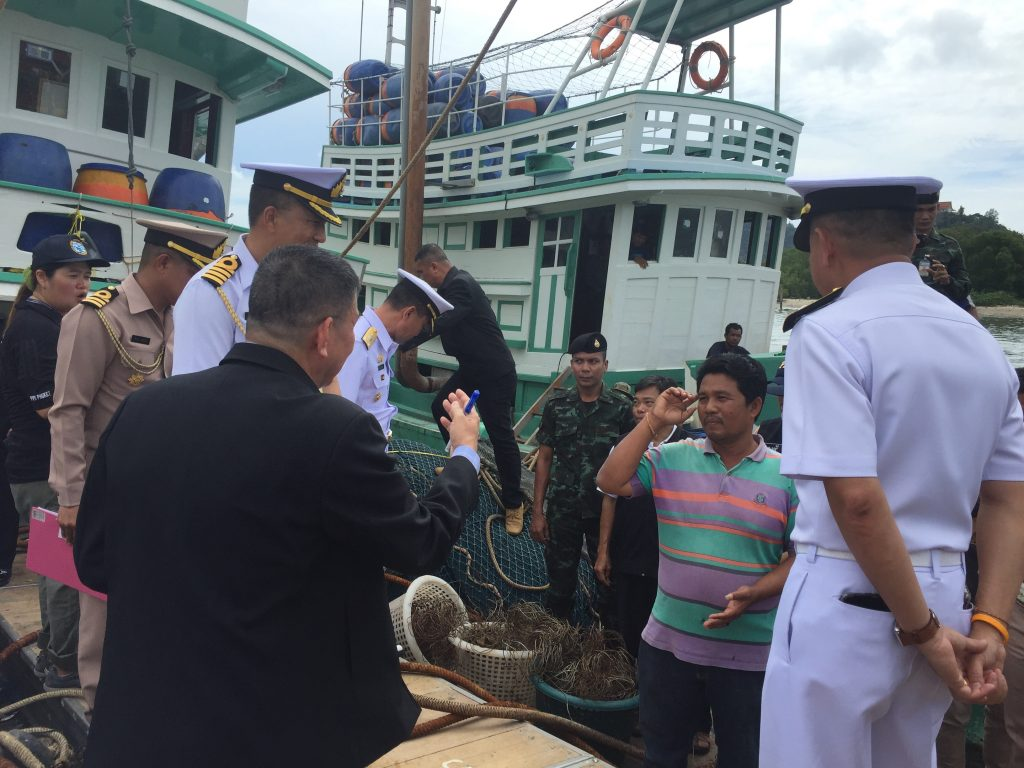 Captains to face more charges in whale shark incident   News by Thaiger
