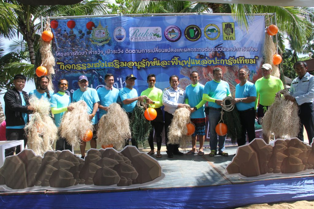 The Andaman's first artificial seaweed installation in Khao Lak | News by Thaiger