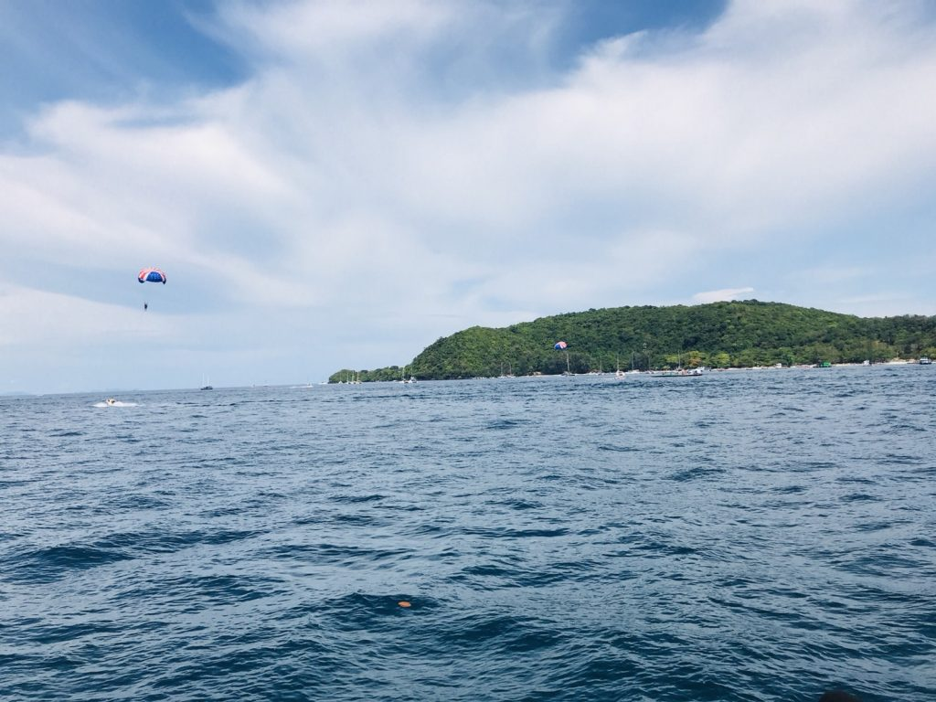 Whale shark search continues around Phang Nga Bay | News by Thaiger