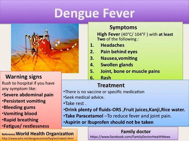 Phichit: Hundreds affected by Dengue | News by Thaiger