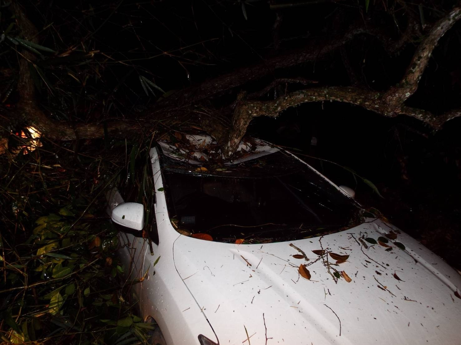 Two escape serious injuries in Phuket storm | The Thaiger