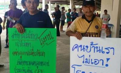 Plans for Phuket pork factory changed to 'refrigeration and storage facility' | The Thaiger
