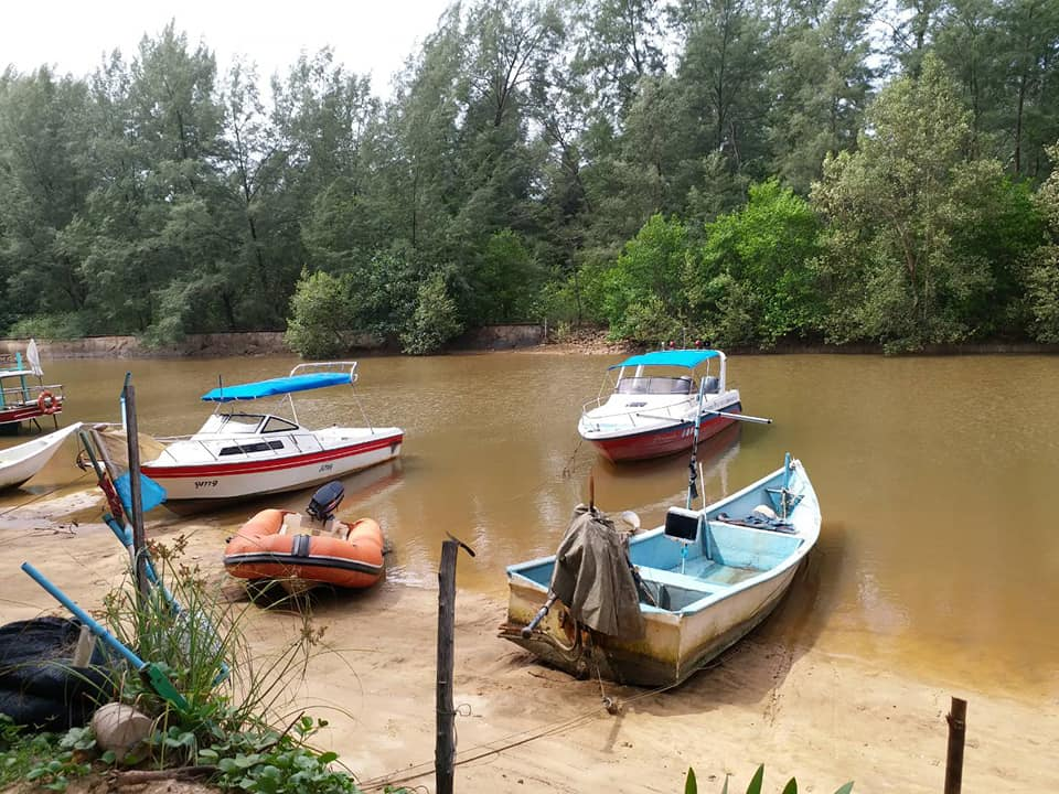 Officials investigating alleged encroachment in a Layan mangrove | News by The Thaiger