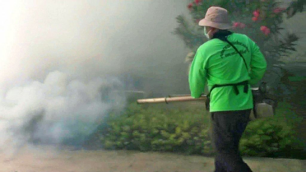 Dengue claims first victim in Bangkok for 2018 | News by Thaiger