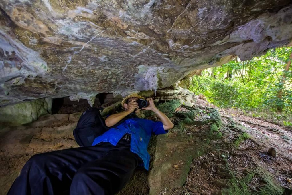 Ancient paintings found in Krabi cave | News by The Thaiger