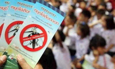 ASEAN commits to tackling Dengue | The Thaiger