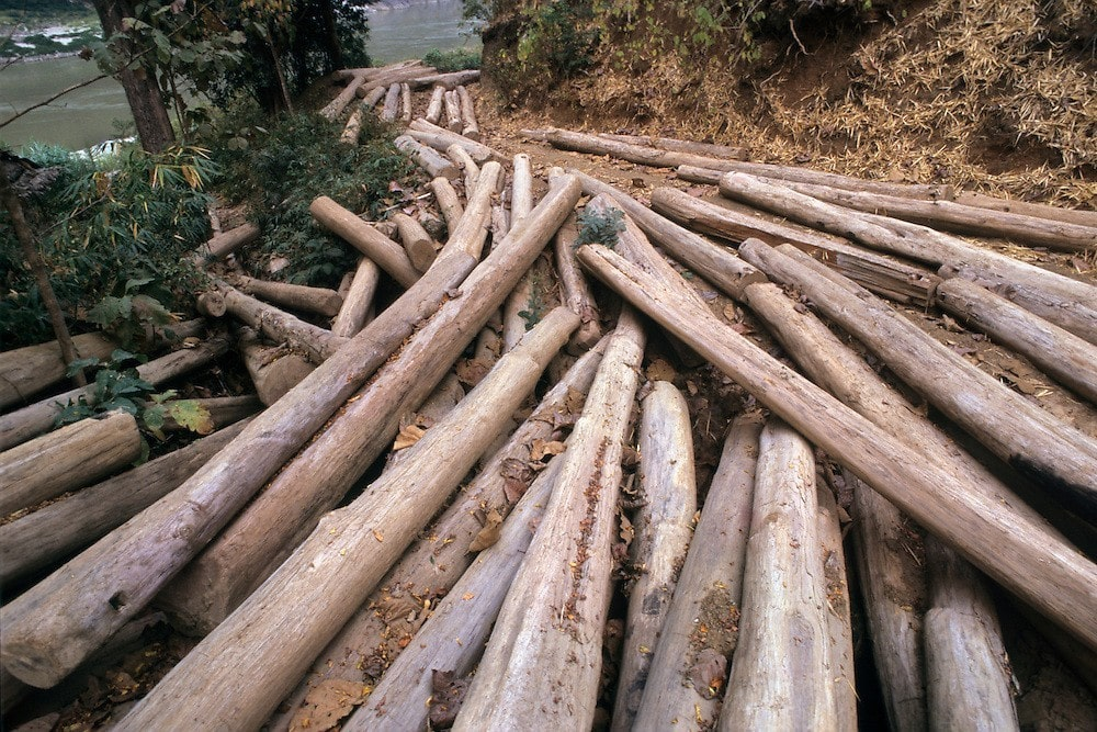 Illegal timbers seized in Phang Nga | The Thaiger